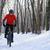 férfi · hegy · motoros · lovaglás · bicikli · erdő - stock fotó © maxpro