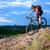 kerékpáros · lovaglás · bicikli · lefelé · domb · hegy - stock fotó © maxpro