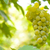 Close-up Image of Ripe Bunche of White Grapes on Vine stock photo © maxpro
