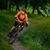 kerékpáros · lovaglás · bicikli · nyom · nyár · erdő - stock fotó © maxpro