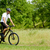 Cyclist Riding the Bike on the Trail in the Forest stock photo © maxpro