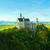 ノイシュヴァンシュタイン城 · アルプス山脈 · ドイツ · 森林 · 山 · 夏 - ストックフォト © maxpro