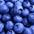 Background of Fresh Ripe Sweet Blueberries stock photo © maxpro