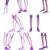 3D · medische · illustratie · bot - stockfoto © maya2008