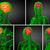 3D · medische · illustratie · hersenen · abstract - stockfoto © maya2008