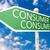 fogyasztó · fiatal · üzletasszony · rajz · információ · átlátszó - stock fotó © mazirama