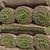 Sod rolls stock photo © mblach