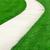 caminho · verde · campo · Ásia · grama · folha - foto stock © mblach