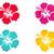 Hawaii · hibiscus · fleur · feuille · livre · de · coloriage - photo stock © mcherevan