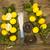 ág · citromok · fánkok · gyertyák · korona · kecske - stock fotó © mcherevan