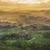 bomen · zonsondergang · Duitsland · hemel · natuur · veld - stockfoto © meinzahn