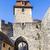 Duitsland · historisch · stad · hemel · gebouw · stad - stockfoto © meinzahn