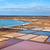 соль · очистительный · завод · природы · пейзаж · острове · горячей - Сток-фото © meinzahn
