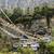 吊り橋 · ネパール · 川 · 建設 · 風景 · 金属 - ストックフォト © meinzahn