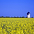 water tower in beautiful landscape with blue sky stock photo © meinzahn