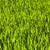 belo · verde · milho · harmônico · estrutura · primavera - foto stock © meinzahn