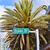 jelzőtábla · híres · utca · óceán · Miami · dél - stock fotó © meinzahn