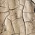 impianto · essiccati · screpolato · fango · foglia · deserto - foto d'archivio © meinzahn