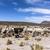 nyáj · Bolívia · park · tájkép · haj · hegy - stock fotó © meinzahn