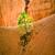 navajo loop trail   wall street bryce canyon national park stock photo © meinzahn