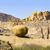 kaya · oluşumu · çöl · gün · batımı · manzara · Namibya · Afrika - stok fotoğraf © meinzahn