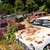 старые · автомобилей · крушение · автомобилей · зеленый - Сток-фото © meinzahn
