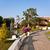 mooie · gebouwen · park · knal · hoofd- - stockfoto © meinzahn