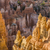 beautiful landscape in bryce canyon stock photo © meinzahn