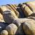 sceniczny · skał · drzewo · parku · ukryty · dolinie - zdjęcia stock © meinzahn