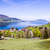 beautiful view to the attersee in austria stock photo © meinzahn