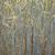 maïs · domaine · lance · belle · eau · feuille - photo stock © meinzahn