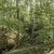 sis · vadi · güzel · görmek · puslu · kuzey - stok fotoğraf © meinzahn