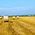 bale of straw on field stock photo © meinzahn