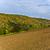 heuvels · vallei · rivier · landschap · licht - stockfoto © meinzahn