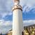 torony · kastély · rossz · eredeti · helyszín · híres - stock fotó © meinzahn