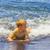 ビーチ · シャツ · 赤ちゃん · 楽しい · 少年 - ストックフォト © meinzahn