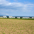nieuwe · huisvesting · weide · mooie · landschap · gras - stockfoto © meinzahn