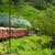 diesel · trem · cênico · montanha · seguir · Sri · Lanka - foto stock © meinzahn