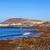 mesire · manzaralı · sahil · sabah · plaj · ağaç - stok fotoğraf © meinzahn