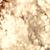 Golden colored abstract light background stock photo © Melpomene