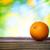 citromsárga · zöld · gyümölcsök · narancs · narancsfa · citrus - stock fotó © melpomene