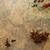 香料 · 草藥 · 木桌 · 胡椒 · 勺子 - 商業照片 © melpomene