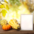 action · de · grâces · accueil · laisse · table · automne - photo stock © melpomene