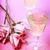 two champagne glasses with pink roses stock photo © melpomene