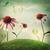 virág · virágok · kert · napos · idő · természet · egészség - stock fotó © melpomene