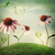 bloem · bloemen · tuin · natuur · gezondheid - stockfoto © melpomene