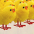 abundance of easter chicks selective focus stock photo © michaklootwijk