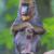 macaco · masculino · retrato · animal · floresta · Camarões - foto stock © michaklootwijk
