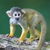 small common squirrel monkeys saimiri sciureus stock photo © michaklootwijk
