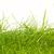 yeşil · ot · su · damlası · çim · soyut · doğa - stok fotoğraf © michaklootwijk